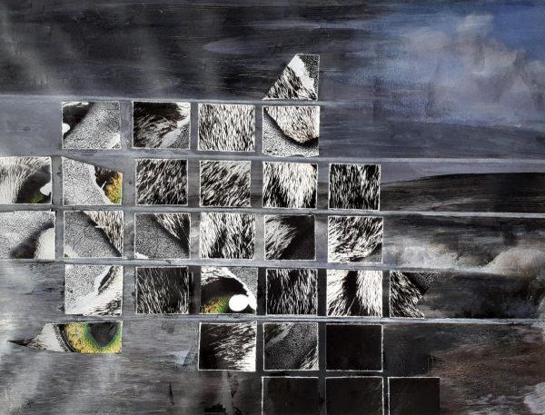 Katzen lieben Fische Collage Andrea Wildhagen
